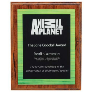 250MM Vivid Plaque - Green from $47.34