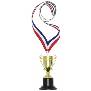 105MM Mini 3D Cup with Neck Ribbon from $6.00